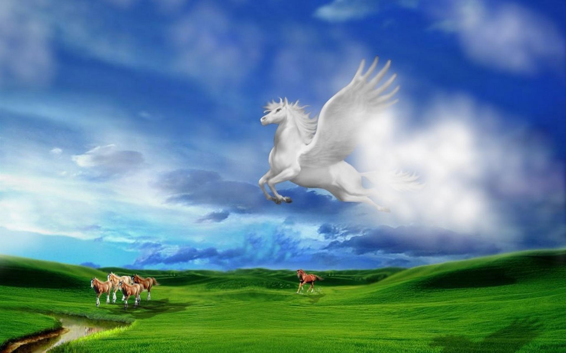 Обои кони, лошади, полет, крылья