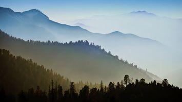 Бесплатные фото лес,деревья,горы,вершины,туман,природа,пейзажи