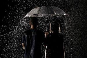 Фото бесплатно люди, пара, дождь