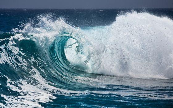 Фото бесплатно волна, океан, вода