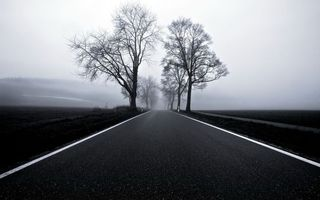 Photo free road, asphalt, spring