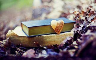 Фото бесплатно книги, деревянное, сердечко