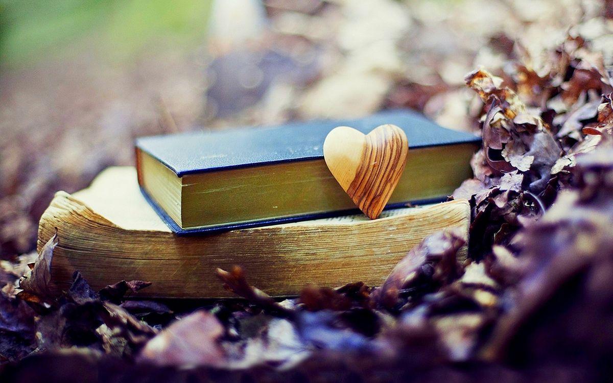 Фото бесплатно книги, деревянное, сердечко - на рабочий стол