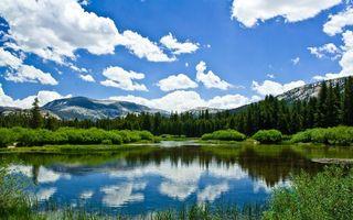 Бесплатные фото небо,облака,река,вода,отражение,деревья,ели