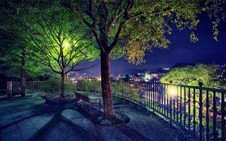 Фото бесплатно парк, деревья, крона, листья, зеленые, лето, кора, ствол, скамейка, лавочка, забор, вечер, город, природа