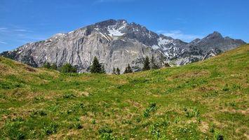 Бесплатные фото поле,трава,деревья,горы,снег,небо,голубое