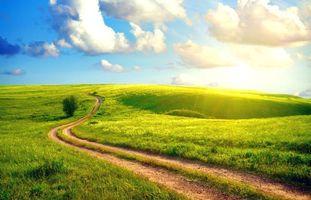 Бесплатные фото поле, трава, солнце, дорога, пейзажи
