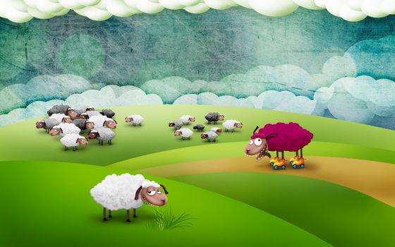 Бесплатные фото поле,луг,шерсть,мех,трава,ролики,малиновый,белый,серый,стадо,абстракции,животные