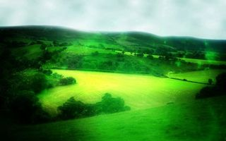 Photo free paths, grass, greens
