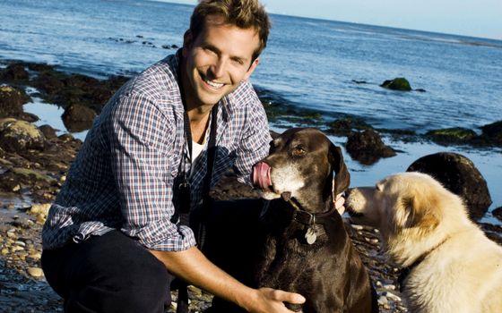 Photo free bradley cooper, dogs, puppies