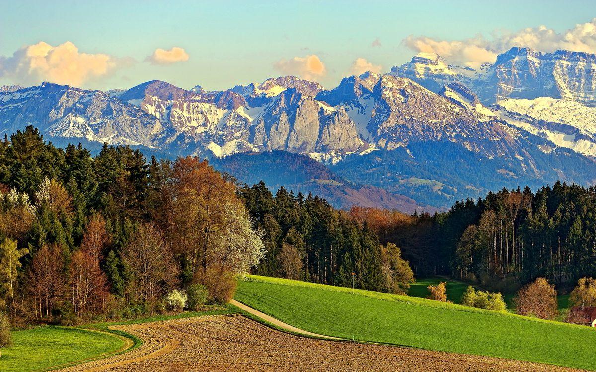Обои горы, дорога, лес, небо, холмы, пейзажи на телефон   картинки пейзажи