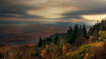 Бесплатные фото лес,деревья,холмы,небо,тучи,гроза,природа
