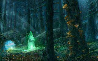 Бесплатные фото лес,грибы,деревья,человек,мантия,пещера,ночь