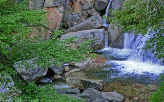 Фото бесплатно березки, реки, небо