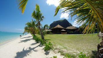 Бесплатные фото океан,вода,остров,пальмы,песок,жара,природа