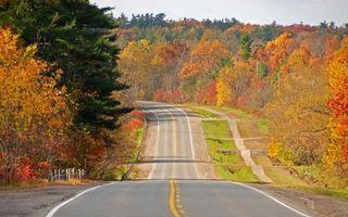 Фото бесплатно осень, маркировка, пейзажи