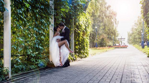 Photo free guy, girl, wedding