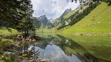 Фото бесплатно река, вода, горы, лес, деревья, трава, заленая, природа