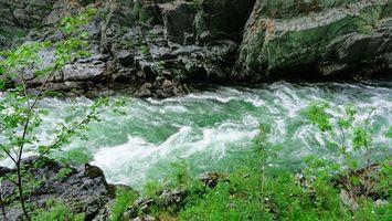 Бесплатные фото река,вода,волны,горы,скалы,лес,деревья