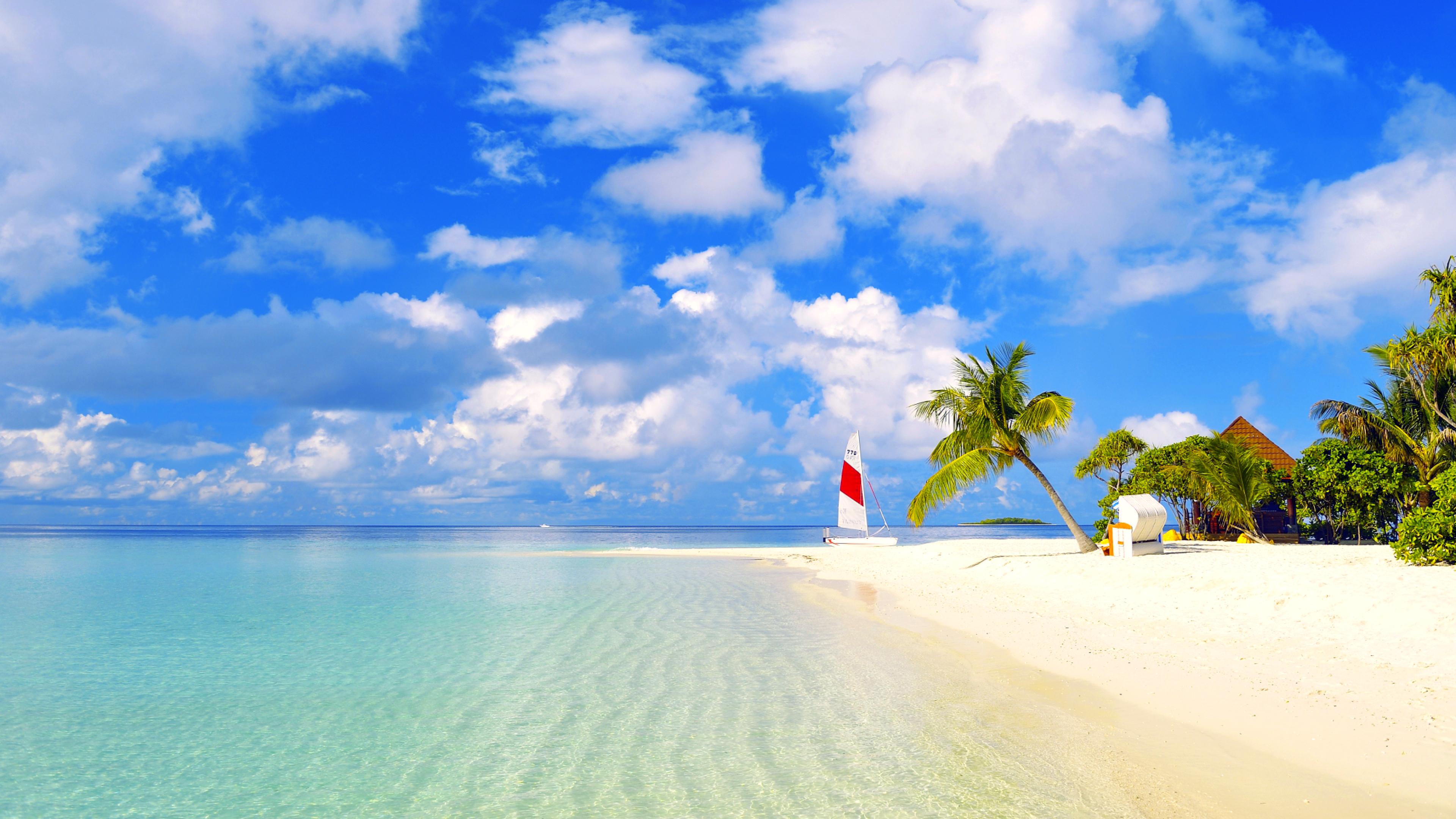 природа песок пляж дома море пальмы  № 3778441  скачать