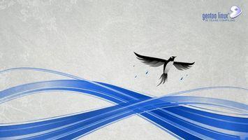 Бесплатные фото gentoo linux,10 лет,компания,птица,линии,бренд,hi-tech