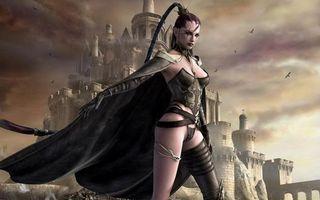 Бесплатные фото девушка,воин,плащ,корсет,замок,птицы,небо