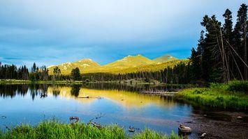 Фото бесплатно пейзажи, деревья, горы