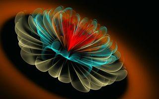 Бесплатные фото графика,линии,круги,лепестки,цветок,листья,фон