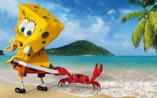 Бесплатные фото губка,боб,берег,море,краб,пальма,мультфильмы