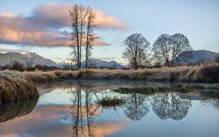 Фото бесплатно осень, заморозки, иней, река, деревья, горы