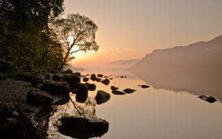 Бесплатные фото река,лес,деревья,скалы,камни,берег,вода