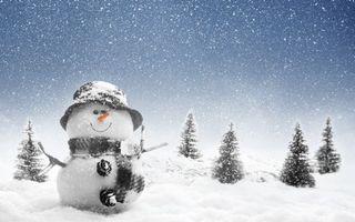 Фото бесплатно снеговик, шапка, ветки