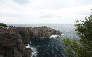 Бесплатные фото вода,небо,туман,скалы,море,обрыв,деревья