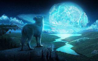 Заставки волк, луна, вой, горы, скалы, небо, звезды