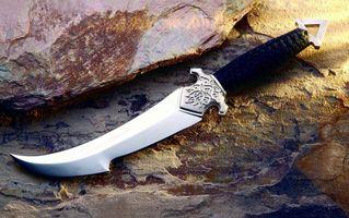 Photo free dagger, engraving, hilt