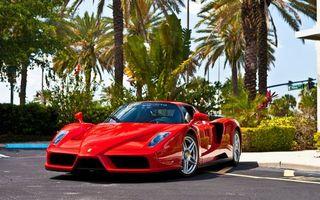 Бесплатные фото автомобиль,колеса,диски,цвет,красный,пальмы,деревья