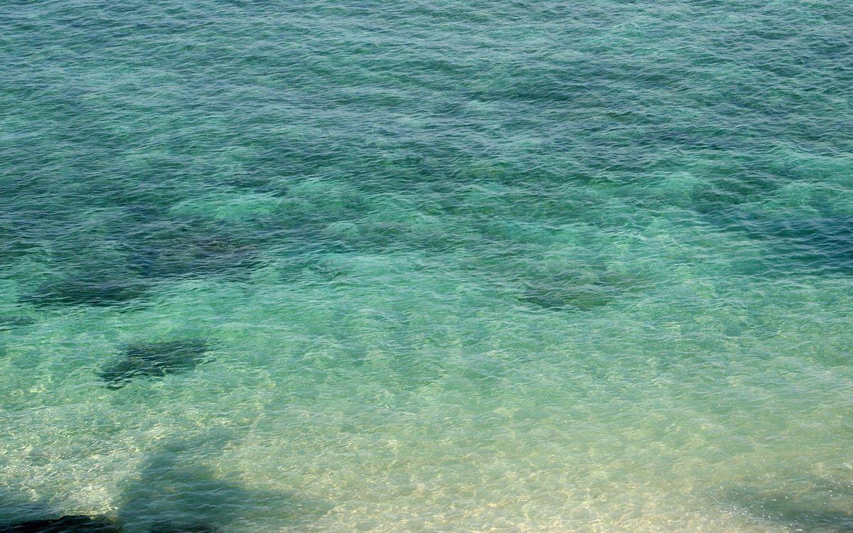 Фото бесплатно дно, песок, океан, море, вода, волны, отпуск, отдых, юг, подводный мир, подводный мир