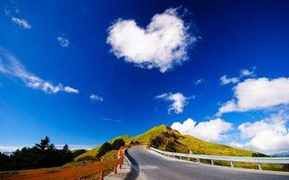 Бесплатные фото дорога,асфальт,отбойники,гора,трава,деревья,небо