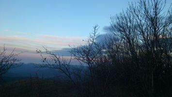 Бесплатные фото лес,деревья,трава,горы,небо,облака,горизонт