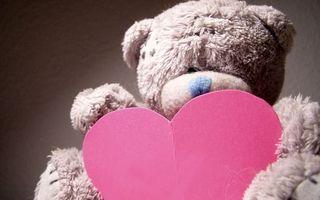 Бесплатные фото медведь,плюшевый,игрушка,сердце,розовое,бумажное,разное