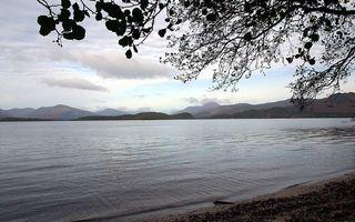 Фото бесплатно море, океан, вода, деревья, берег, набережная, листья, ветки, крона, отражение, природа, пейзажи