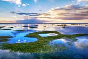 Фото бесплатно озеро, вода, трава, водоросли, небо, облака, тучи, свет, горизонт, гладь, отражение, край, пейзажи, природа