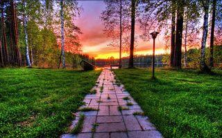 Бесплатные фото тропинка,лодка,закат,солнце,трава,деревья,лес