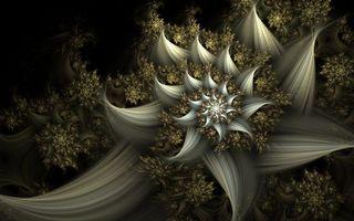 Фото бесплатно заставки, узор, цветы