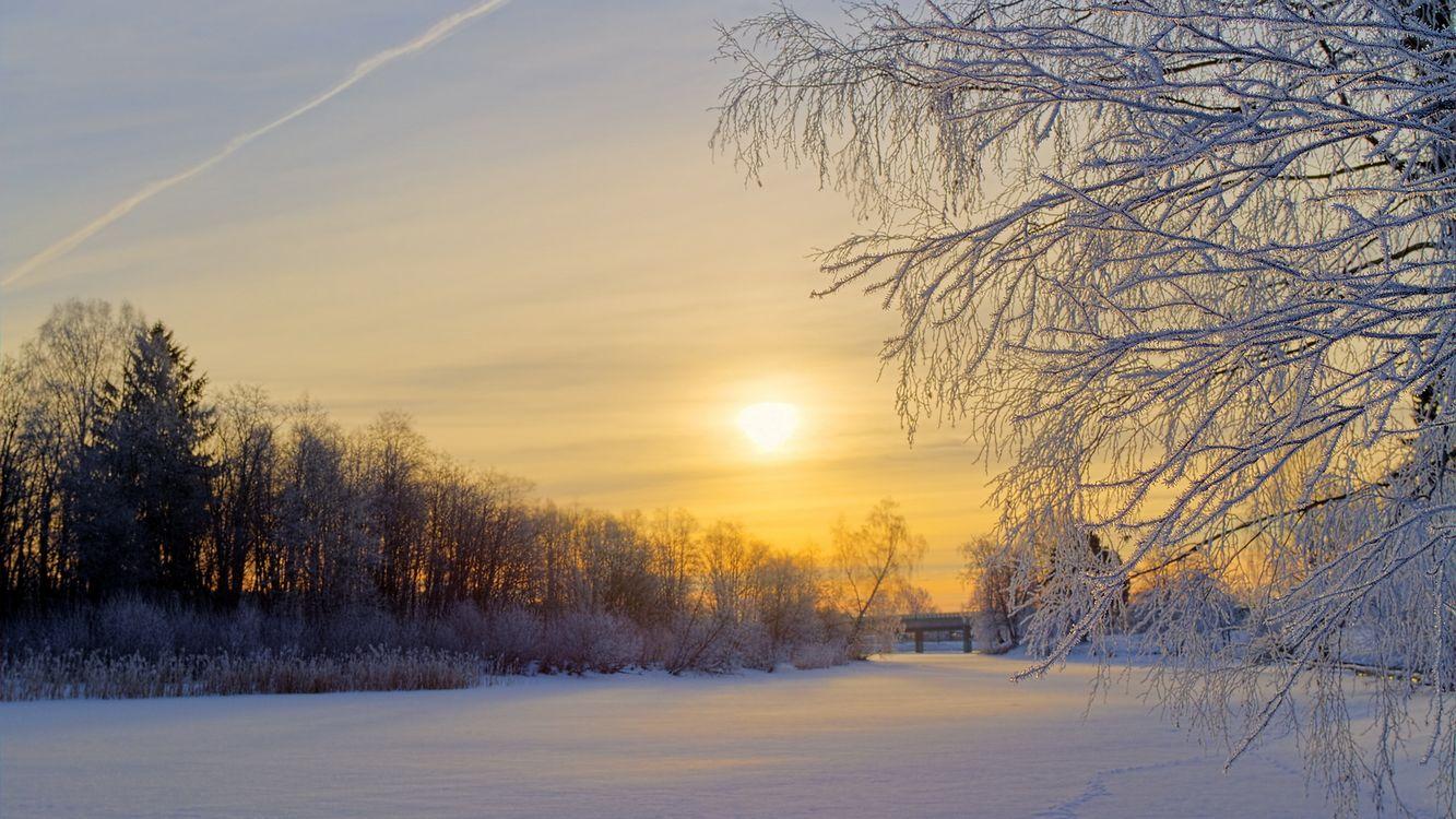 Картинка зима, снег, река, деревья, иней, небо, солнце, природа на рабочий стол. Скачать фото обои природа