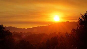 Бесплатные фото закат,гора,деревья,солнце,лучи,зелень,трава