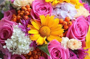 Обои букет, композиция, цветы, разные, ягода, рябина