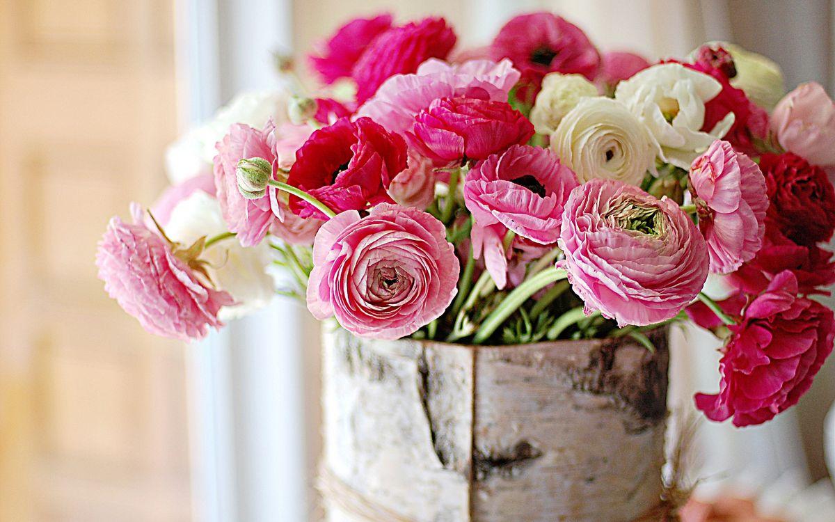 Фото бесплатно пионы, лепестки, стебель, ваза, стол, алый, розовый, красный, бутон, береза, кора, букет, цветы, цветы - скачать на рабочий стол