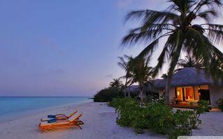 Бесплатные фото вечер,берег,море,песок,лежаки,пальмы,бунгало