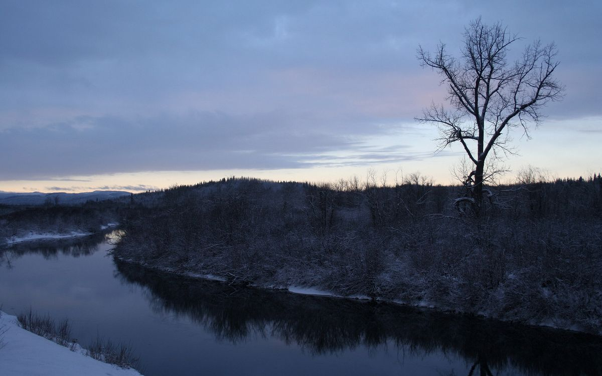 Фото бесплатно вода, река, берег, снег, трава, дерево, закат, природа, природа